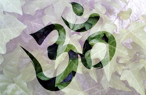 Le coeur ouvert & Om Namah Shivaya