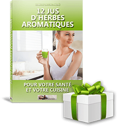cover_ebook_12jus_gift